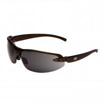 Gafa 1200E Gris, Lente PC gris AR y AE 71509-00001M (20 gafas)