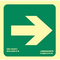 Señales De Evacuacion Luminiscentes Gran Formato Flecha Derecha