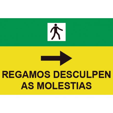 Señales Viales PVC Gallego Rogamos Disculpen Molestias Der