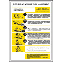 Señal Eléctrica Respiración Salvamento